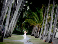 palm cove wedding bride