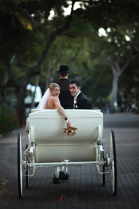 Palm Cove Wedding Carriage