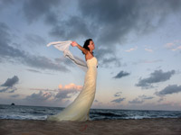 palm cove wedding in the breeze