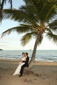 palm cove wedding under the palm tree
