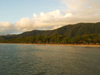 Palm Cove Beach View