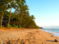 Palm Cove Beach