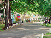 Palm Cove Streets